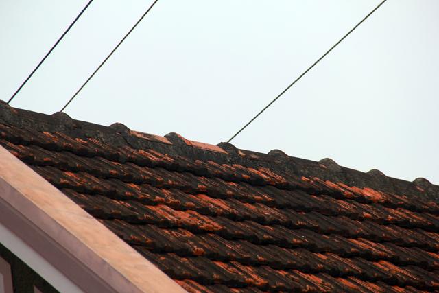 Đường dây điện trần 10kv đi sát ngay dưới mái ngói nhà dân. Ảnh: Phan Ngọc