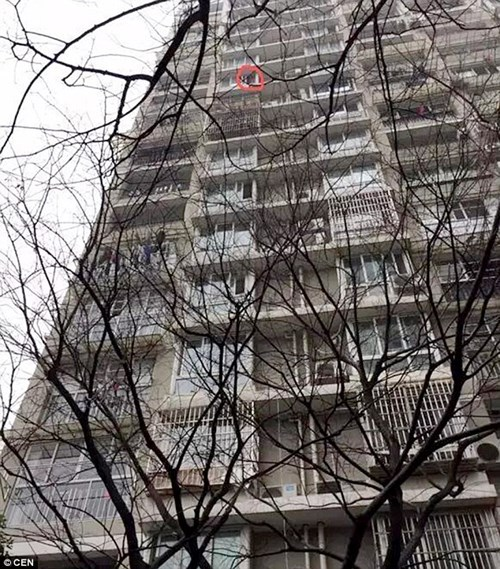 Khu nhà của gia đình Liu Liu.