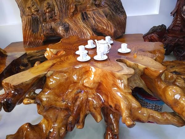 Chiếc bàn được làm từ gốc cây huỳnh đàn có đường kính lên tới 1,6m.