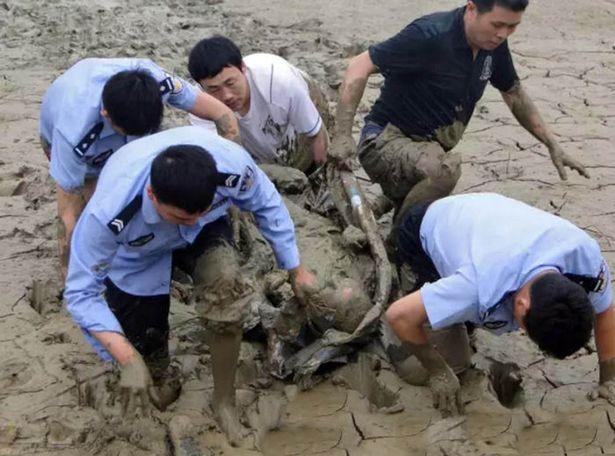 Toàn người ông chìm sâu dưới lớp bùn bẩn thỉu.