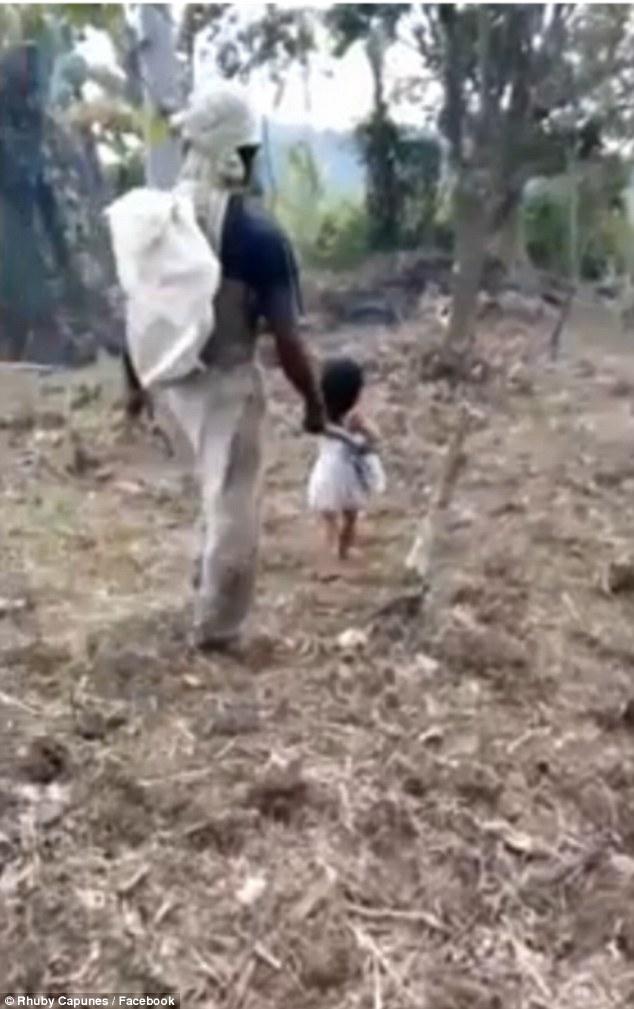 Bé Jenny dẫn cha đến đồn điền trồng dừa vào mỗi sáng
