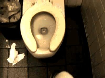 Đây có lẽ là viễn cảnh mà không ai có thể ngờ tới khi đi toilet
