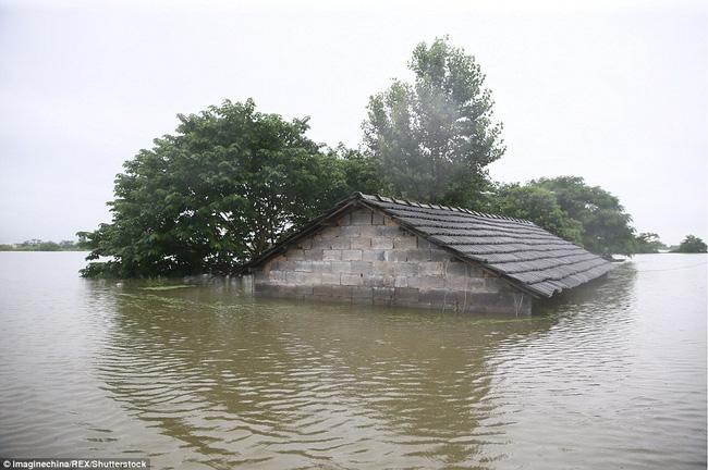 Chính phủ Trung Quốc đã phải huy động hơn 2.500 lính đi cứu nạn. Tính đến hôm qua, thiệt hại kinh tế ước tính hơn 7,5 tỷ USD.