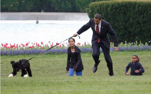 Ông Obama tài giỏi trên chính trường nhưng về nhà, ông không thể kiểm soát con chó cưng của mình.
