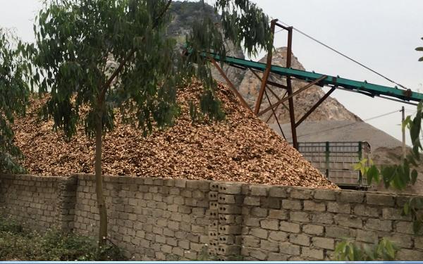 Xưởng băm dăm Bình Minh tại xã Trường Lâm, huyện Tĩnh Gia, tỉnh Thanh Hóa (Ảnh: TG)
