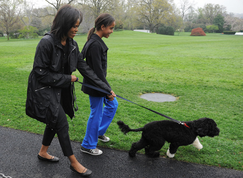 Các cô gái phải tự dọn phòng và chăm sóc chó cưng của cả nhà mà không cần nhờ đến người giúp việc.