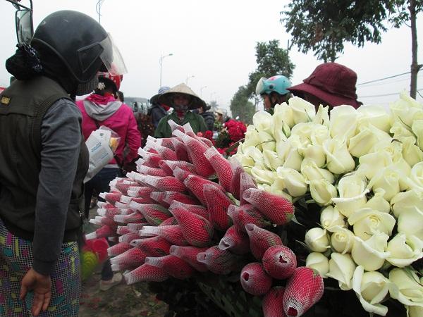 Hoa hồng đỏ hạng đẹp nhất có giá 80.000, còn hồng trắng chỉ 40.000đ/bó (20 bông).