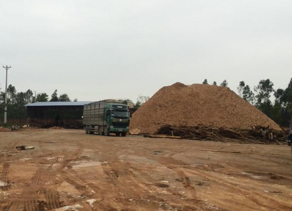 Xưởng băm dăm của Cty Minh Long, Tĩnh Gia, Thanh Hóa