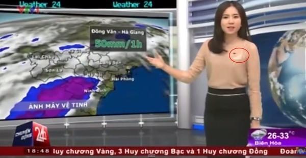 Cô gái thời tiết Mai Ngọc cũng gặp sự cố trang phục dẫn bản tin ngày 16/7/2015 trên sóng truyền hình. Vốn nổi tiếng là nữ MC sở hữu phong cách thời trang thanh lịch, nữ tính nhưng Mai Ngọc lại để lộ một phần nội y kém tinh tế.