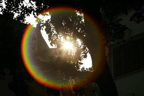 Từ 7h sáng, nắng đã vàng rực trên phố phường Thủ đô