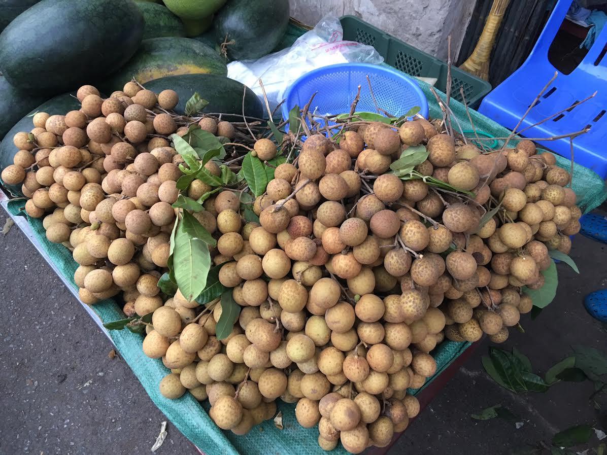 Loại nhãn quả to khủng, vỏ vàng sáng được bày bán la liệt tại chợ Hà Nội
