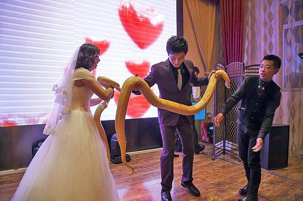 Cô dâu chú rể mỗi người cầm một con trăn vàng trên sân khấu ngày cưới. Ảnh: Rex