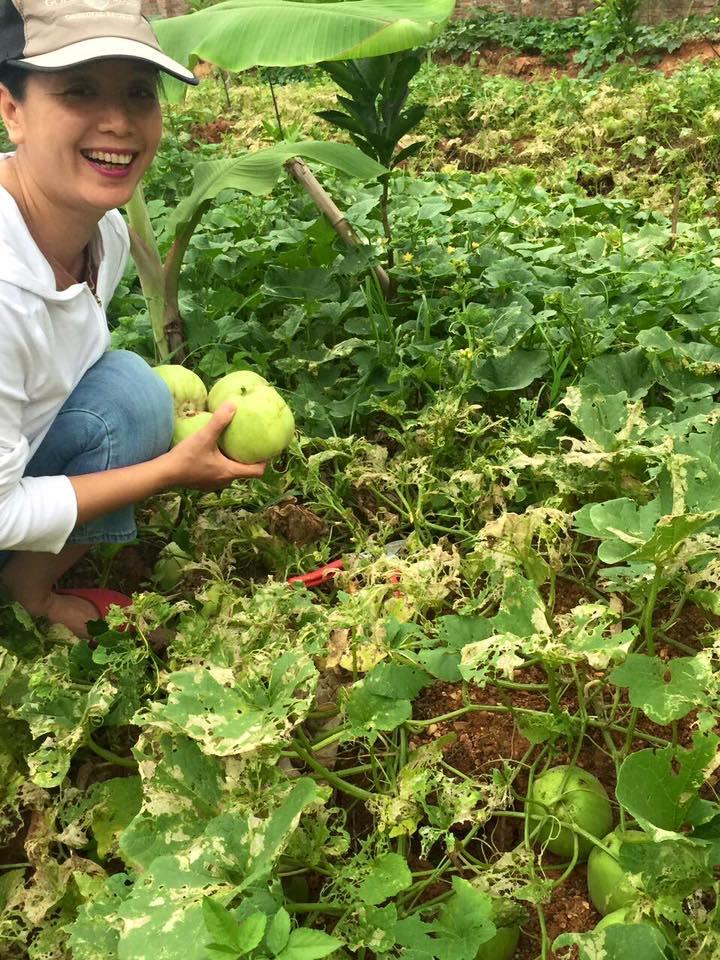 Lại rất giản dị bên khu vườn sai trĩu quả của mình.