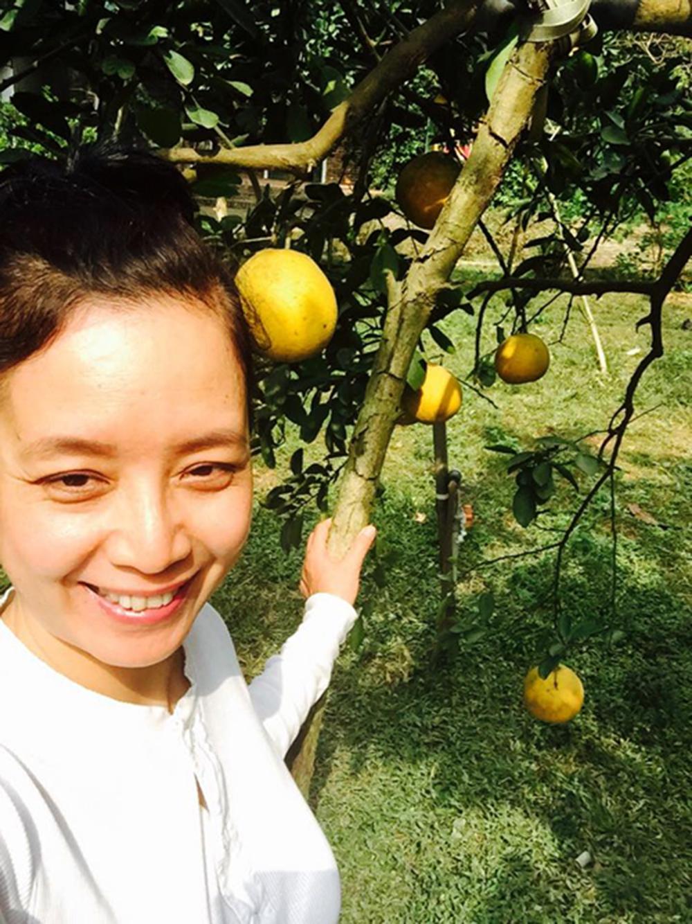 Nữ diễn viên rất hay chụp hình ghi lại những hình ảnh của vườn cây nhà mình.