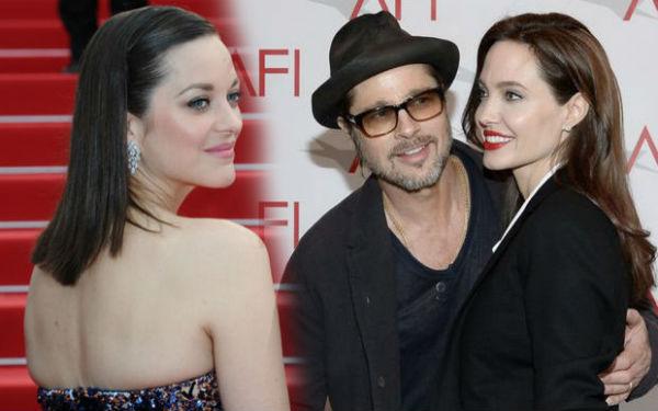 Marion mong Angelina và Brad tìm thấy bình yên sau quyết định ly hôn