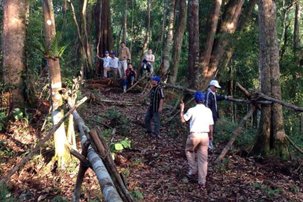Lực lượng chức năng kiểm tra nhiều người đột nhập trái phép vào rừng để săn trầm