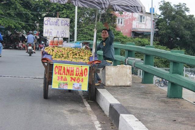 Chanh đào Hà Nội được bán rất nhiều ven các tuyến đường ở TP HCM nhưng mỗi nơi một giá, mỗi kg chanh chênh nhau đến vài chục nghìn đồng. Ảnh: Nguyễn Trí.