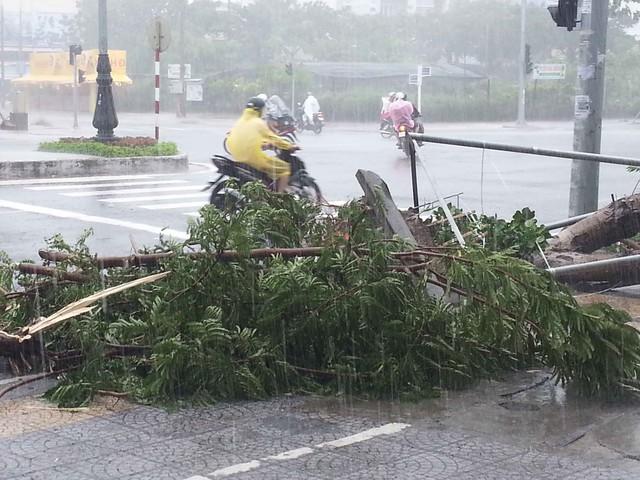 Trời Đà Nẵng đang mưa to, gió lớn...Ảnh Đức Hoàng