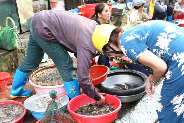 Khi bị ho những thực phẩm đầu tiên cần kiêng là chất tanh (cá, tôm, cua…) vì gây khó thở.  Ảnh: Chí Cường
