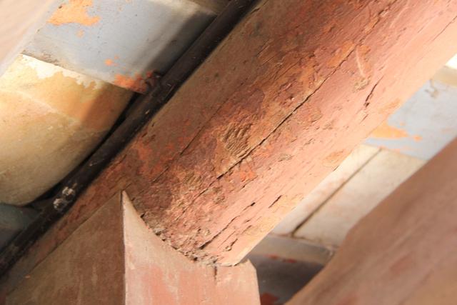 """""""Ngay phần thân cầu, tại nhiều vị trí liên kết giữa đòn tay đỡ mái với các cột bị mục rỗng. Nhiều thanh xà gỗ đỡ mái ngói bị nứt nẻ, cong vênh không thể khớp nối nhau. Các phần mố trụ đỡ chùa Cầu đã và đang xuất hiện nhiều vết nứt, loang lổ, bong tróc vôi vữa…"""", GS.TS Bình phân tích"""
