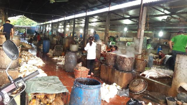 Cảnh giết mổ gà, vịt tại khu chợ tự phát La Khê (quận Hà Đông, Hà Nội). Ảnh chụp rạng sáng 17/7. Ảnh T.G