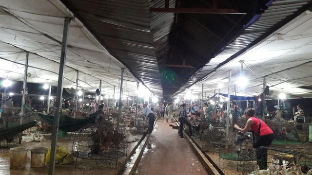 Theo ước tính của các tiểu thương, mỗi ngày chợ tạm La Khê tiêu thụ cả trăm tấn gia cầm với hàng vạn con.