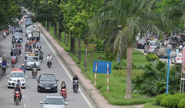Sau hơn 2 tháng không được chăm sóc, cắt tỉa nên cỏ và cây hoa trên dải phân cách đường Hoàng Quốc Việt cỏ đã mọc um tùm.