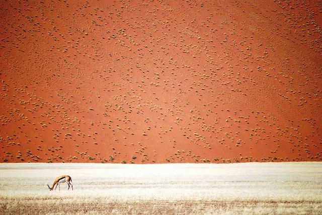 Cô độc - Namibia.