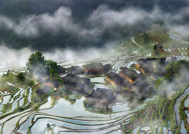 Ruộng bậc thang trong sương sớm - Trung Quốc.