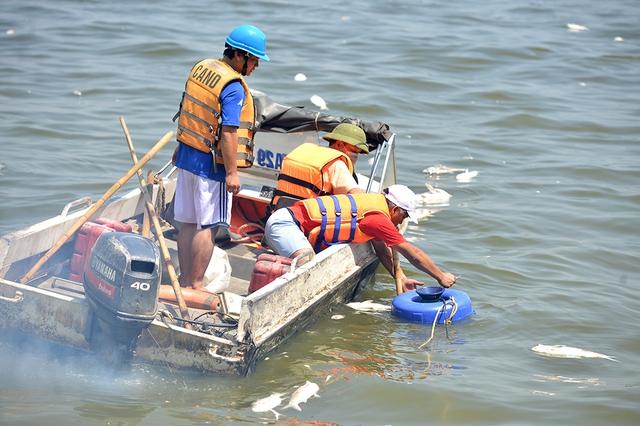 Để làm sạch, tạo thêm ôxy cho mặt nước Hồ Tây, nhân viên môi trường lắp khoảng 40 máy bơm, sục khí. Máy hoạt động hết công suất trên diện tích mặt hồ rộng 500 ha. Ảnh: Giang Huy