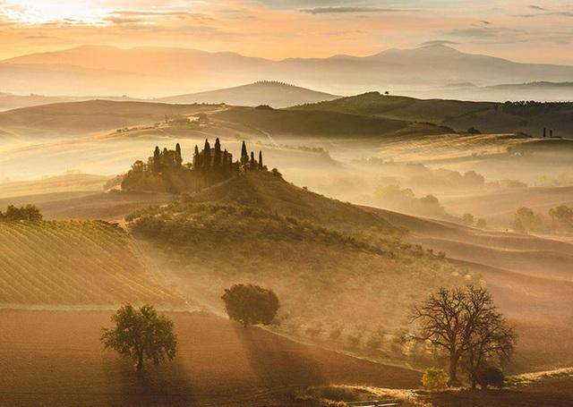 Bình minh vàng tại Tuscany - Italy.