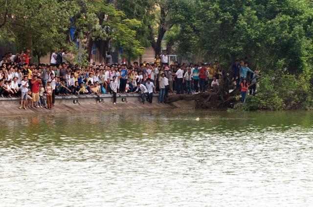 Người dân luôn thích thú khi cụ rùa nổi ở Hồ Gươm