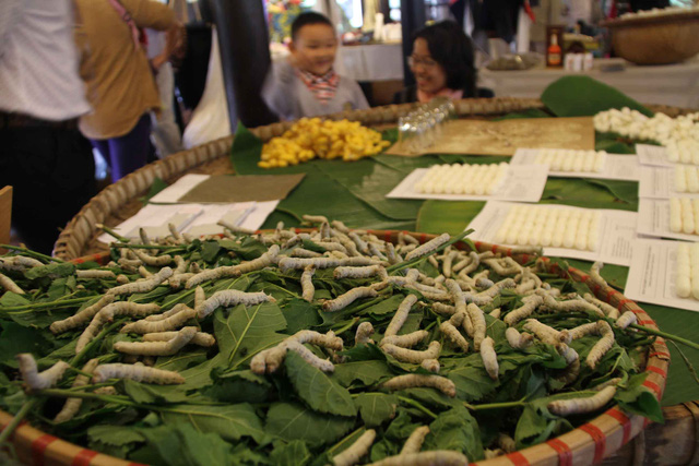 Tại Festival du khách được ngắm nhìn con tằm ăn lá dâu và nhả tơ...