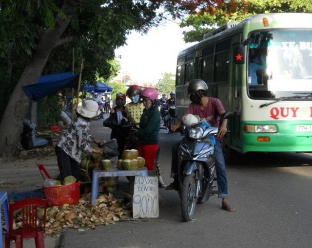 Dừa Bến Tre mùa mưa giá rẻ chỉ chỉ 7.000 đồng, cao lắm 9.000 đồng/trái nhưng...