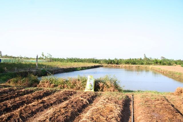 Ao trữ nước của gia đình ông Sơn. Đây là nguồn nước quý hiếm dùng sinh hoạt và tưới tiêu cho 4 hộ gia đình, ông Sơn và 3 người con đang ở xung quanh ao.