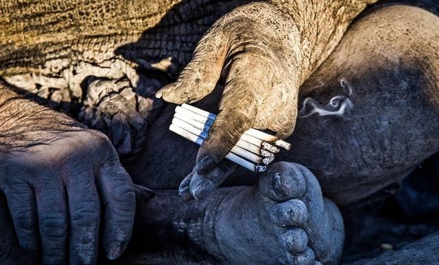 Sống biệt lập với thế giới bên ngoài, ông Amo thường săn bắt động vật hoang dã để làm thức ăn. Món ăn ưa thích của cụ ông này là nhím nướng.