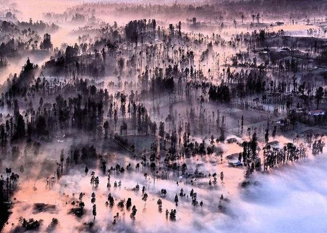 Sương khói tại Cemoro Lawang - Indonesia.