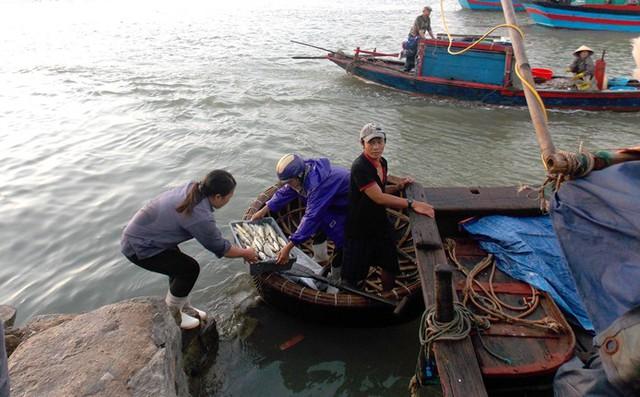 Các ngư dân vẫn ra khơi mỗi ngày