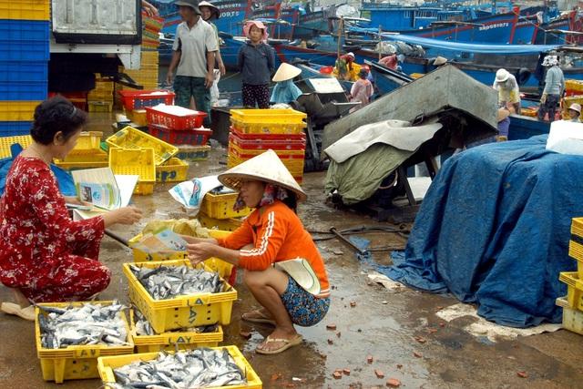 Cán bộ dân số tỉnh Quảng Ngãi tiếp thị các phương tiện tránh thai cho người dân tại cảng cá. Ảnh: Dương Ngọc