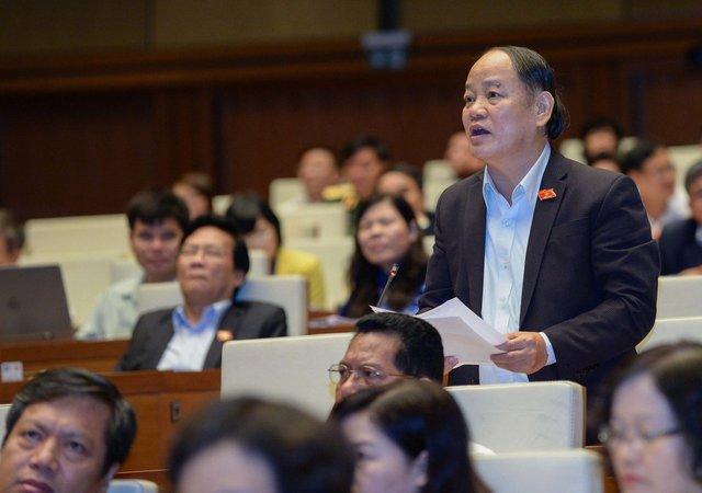Đại biểu Huỳnh Nghĩa, đoàn Đà Nẵng.