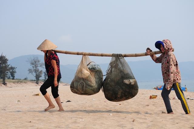 Do không còn cá để đánh bắt và người tiêu dùng không mua cá biển nên hàng loạt gia đình cất lưới, nghỉ ra khơi.