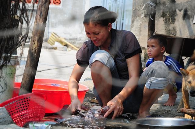 Cá biển vẫn là nguồn thức ăn chính của nhiều hộ dân nơi đây.