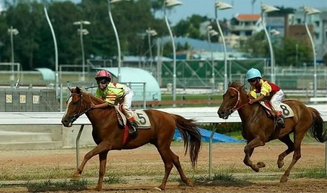 Một trận đua ngựa tại trường đua Phú Thọ hồi chưa bị đóng cửa. Ảnh sưu tầm.