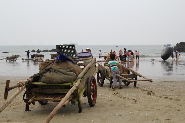 Ngư dân Cửa Lò vẫn ra biển bình thường, bất chấp những sự việc xảy ra ở Hà Tĩnh, Quảng Bình, Thừa Thiên Huế...