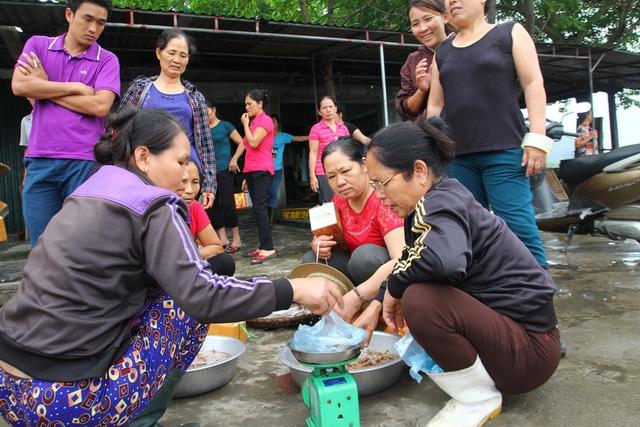 Với người dân Cửa Lò, việc cá chết hàng loạt ở một số tỉnh miền Trung không ảnh hưởng gì cả.