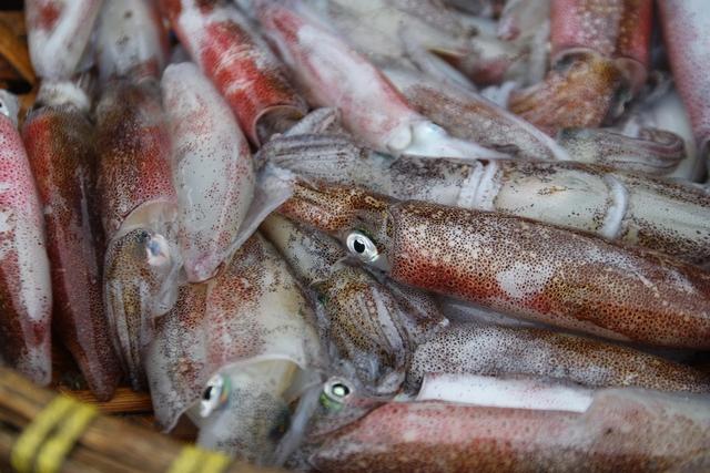 Mức nháy - thứ hải sản nổi tiếng nhất ở Cửa Lò khá khan hiếm ở bến cá.