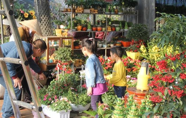các em nhỏ cũng háo hức đi chọn hoa cùng bố mẹ