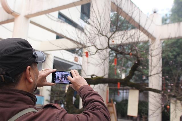 Không cưỡng lại được trước vẻ đẹp của cây đào này nên nhiều người đã lấy điện thoại để chụp lại những hình của cây đào. Ảnh Đình Việt.