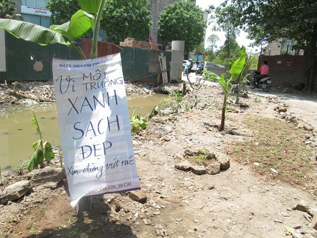 Cống nước được vét sạch rác và trồng cây, hoa. Ảnh: Nông Thuyết