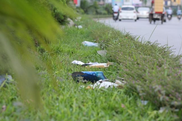 Rác ngập trên thảm cỏ của đường Nguyễn Hoàng.